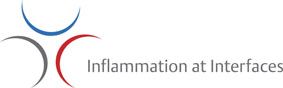 Logo Cluster Inflammation at Interfaces