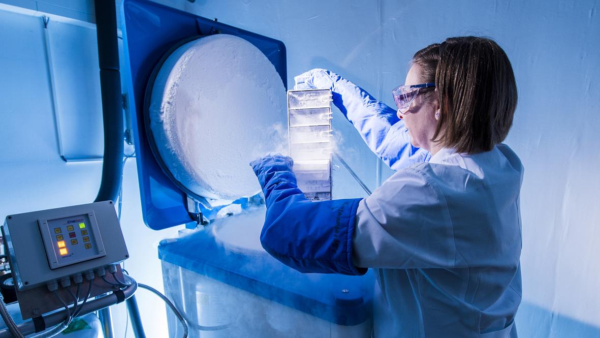 samples stored in liquid nitrogen