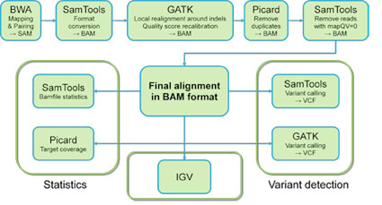 Bioinformatic pipelines