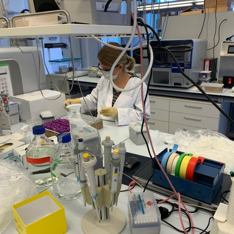 IKMB - DNA Lab, © IKMB, photo: Sandra May