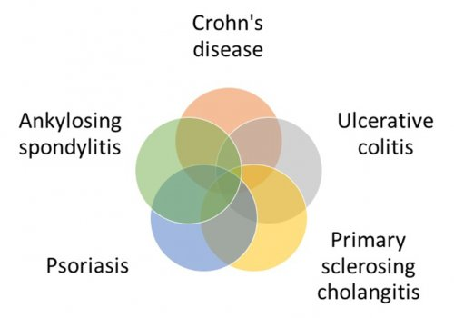 New shared risk loci of five chronic inflammatory diseases, graphic: David Ellinghaus
